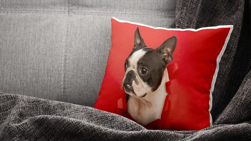 Cushions Main