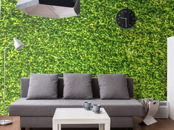 Liściasta ściana