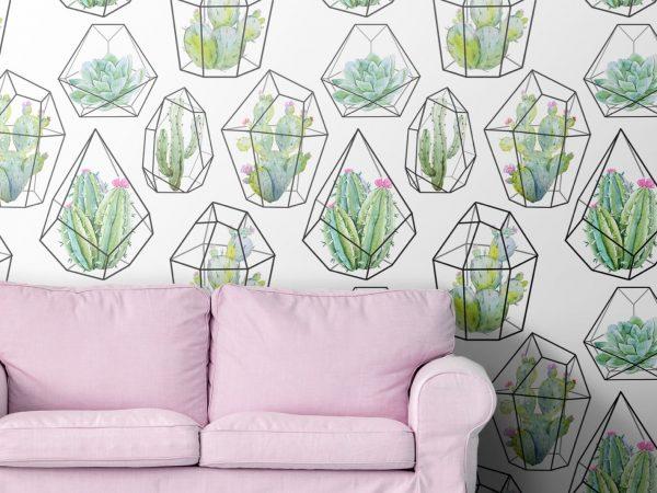 Kaktusowe Bryły
